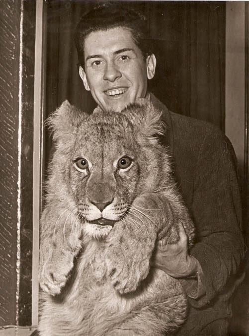 Tenga mit Löwe